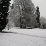 Le grand blanc, Baden, Suisse