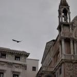 The Bird and the Basilic