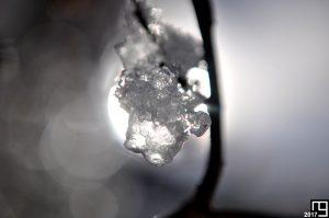 Like a Diamond in the Light